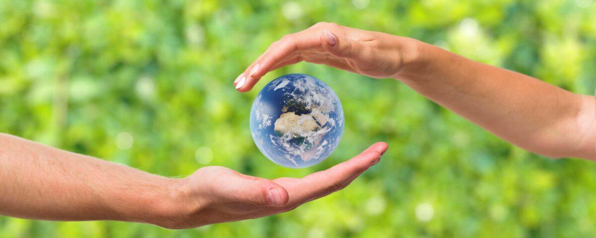 fabricacion-tarimas-sostenible-1